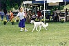 Skye 1996 showing at SCOA National